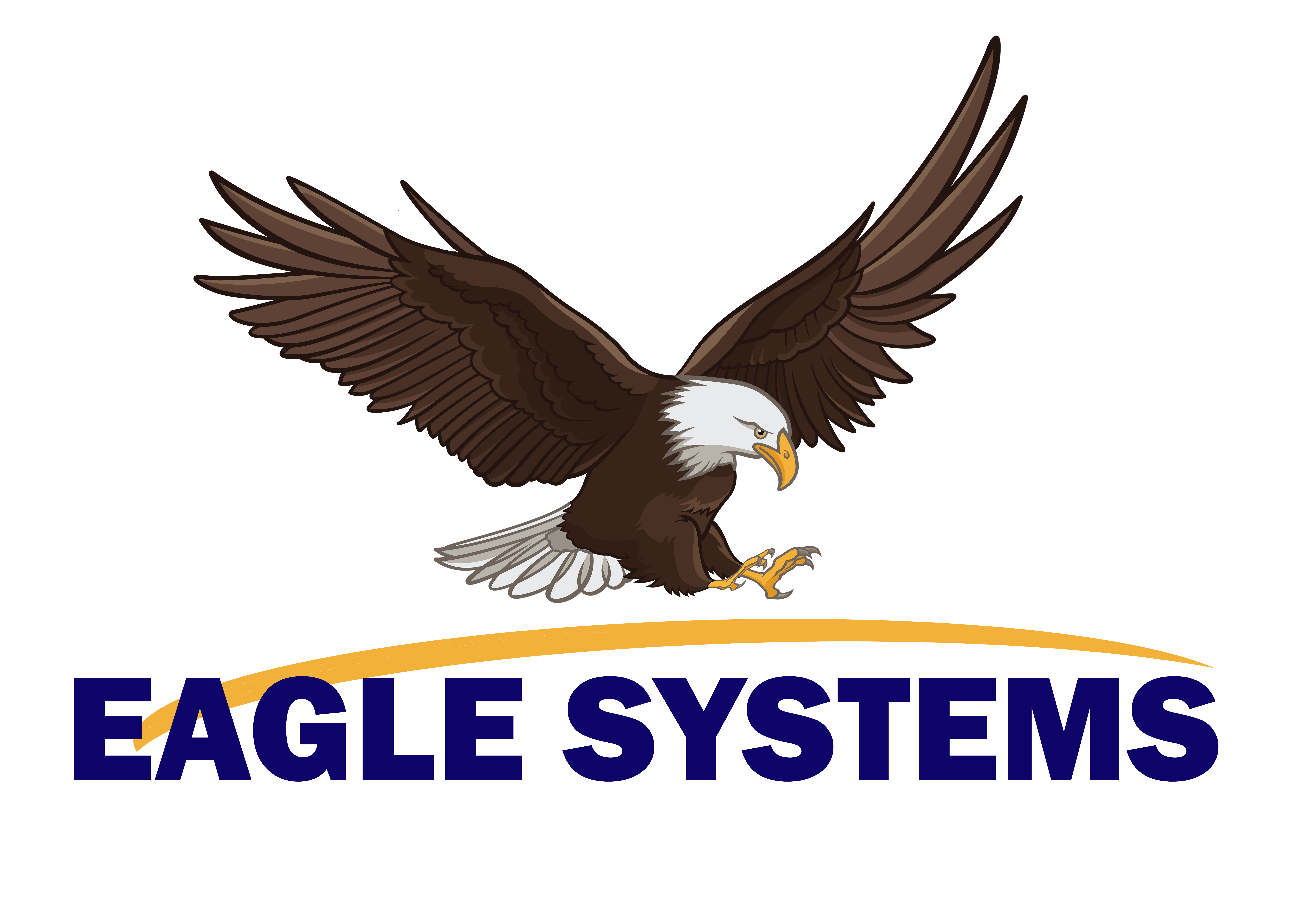 Eagle Systems, Inc.